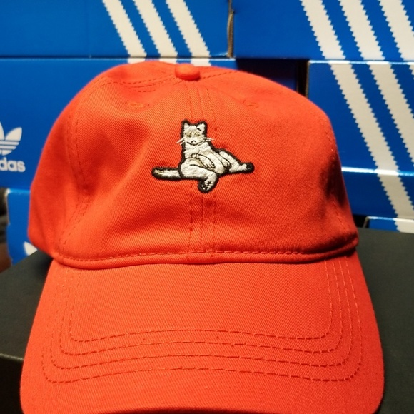 12386fed89926 American Eagle Outfitters Other - Lazy cat dad hat